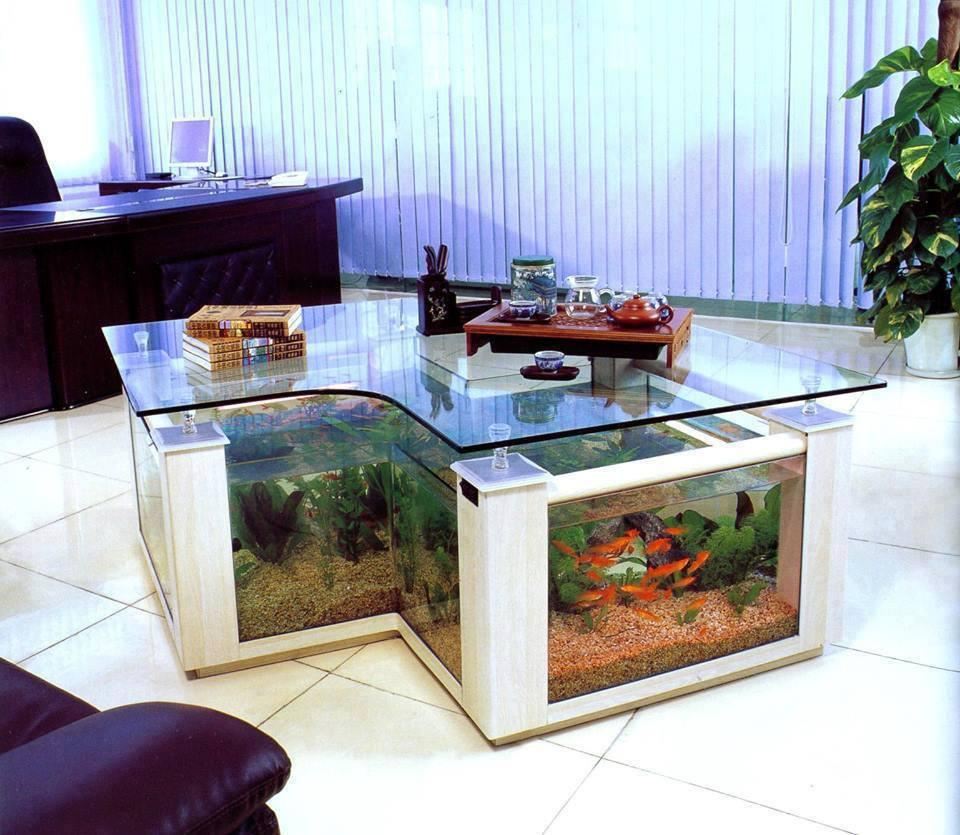 Coffee Table Aquarium Design