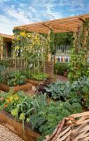 Vegetable garden idea