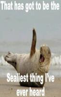 Oh your so sealy
