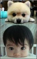 Big eyed baby and dog