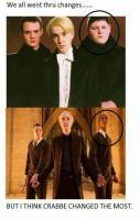 Actors Changes the Most in Harry Potter Series