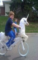 Unicorn bike with horn and tail.  29 Absolutely Terrible Craft Ideas