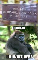 Stop Gorilla hate