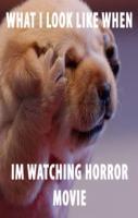 Horror movies.