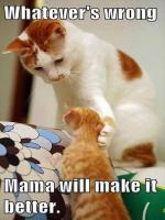 Mama will Make it better... cute