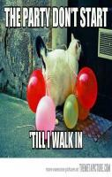 Party cat is in the house… Haha I already pinned this, but it still