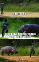 Don't Tease Hippo
