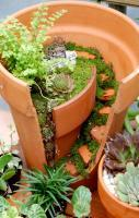 Use every bit of your broken pot, add moss, tiny plants and rocks to f