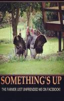 #Thanksgiving #Turkey