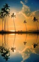 Lagoon, Honolulu, Hawaii... isn't that an amazing place