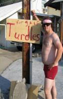 Turdles