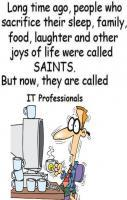 IT Professionals Vs Saints... LOL