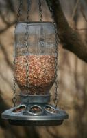 Mason Jar Bird Feeder- Repurposed Mason Jar- Perfect Mason Jar Garden