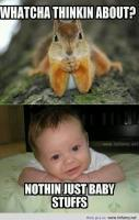 Cute baby and squirrel funuy