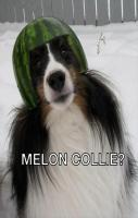 melon collie lol!