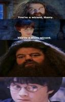 One of my favorite Harry Potter Memes ever