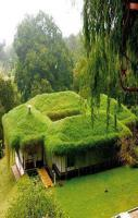 green house Amazing Design with Grass
