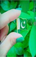 Small Pakistani Beauitful Flag