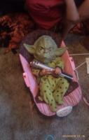 Lil baby yoda