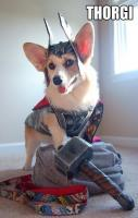 Dog Thor costume design...