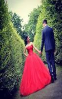 Elegant Colored Wedding Dresses 2016 Sweetheart Applique Beaded Red La