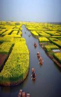 Near Xinghua, Jiangsu