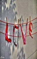 LOVE LOVE LOVE LOVE!!!!
