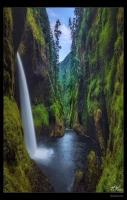 Metlako Falls in the Columbia River Gorge, Oregon