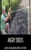 Angry Birds..
