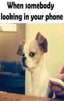 When Somebody Looking In Your Phone