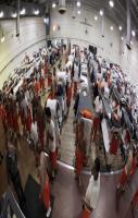 Life of American Prisoners