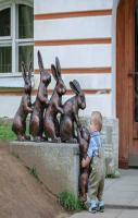 FUNNY CUTE BOY TAKE RABBIT IMAGES PICTURE PHOTO