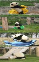 Pandas Not So Good at Slides