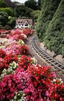 Garden railway...