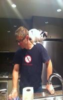 My kitty thinks he's a parrot. Everyone... This is Cody.