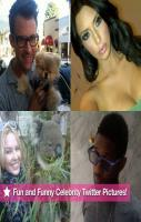 fun and funny celebrity Twitter  pic