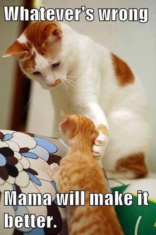 Mama will Make it better... cute