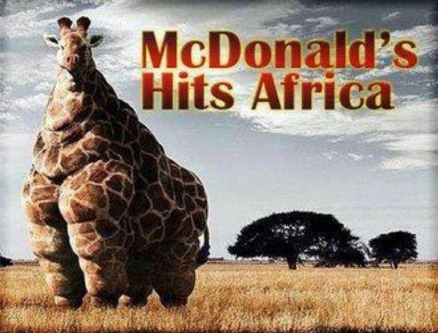 Wha if McDonald's Hit Africa.. LOL