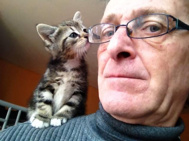 My dad sent me this picture of him and his kitten, biggest aww ever
