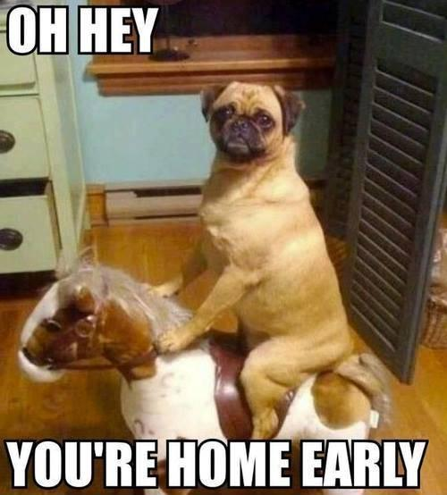 Oh Hey! Your Home Early