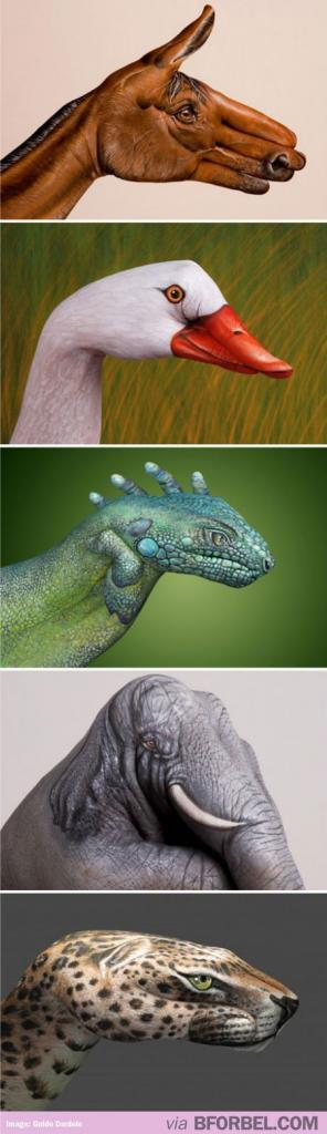 Animals Think again. These are actually hands, painted by a profession