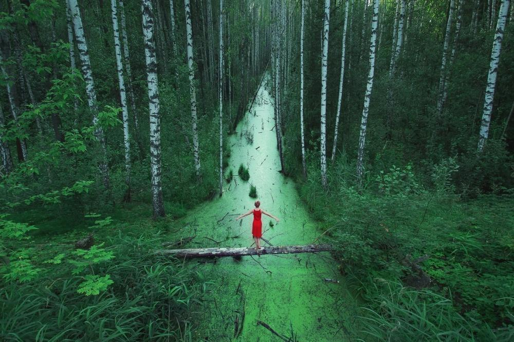 Forests without end, Russia