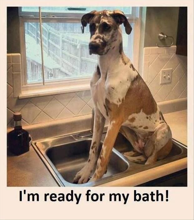 Bath and bath
