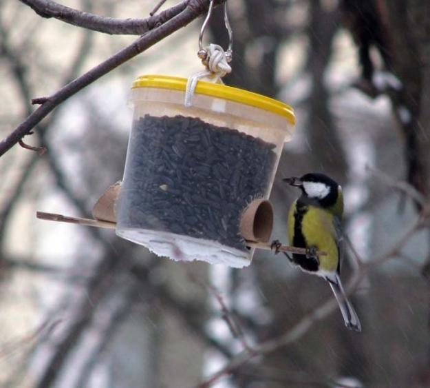 Recycled Crafts and Smart Recycling Ideas for Making Cheap Bird Feeder