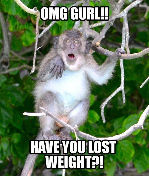 Flattering monkey