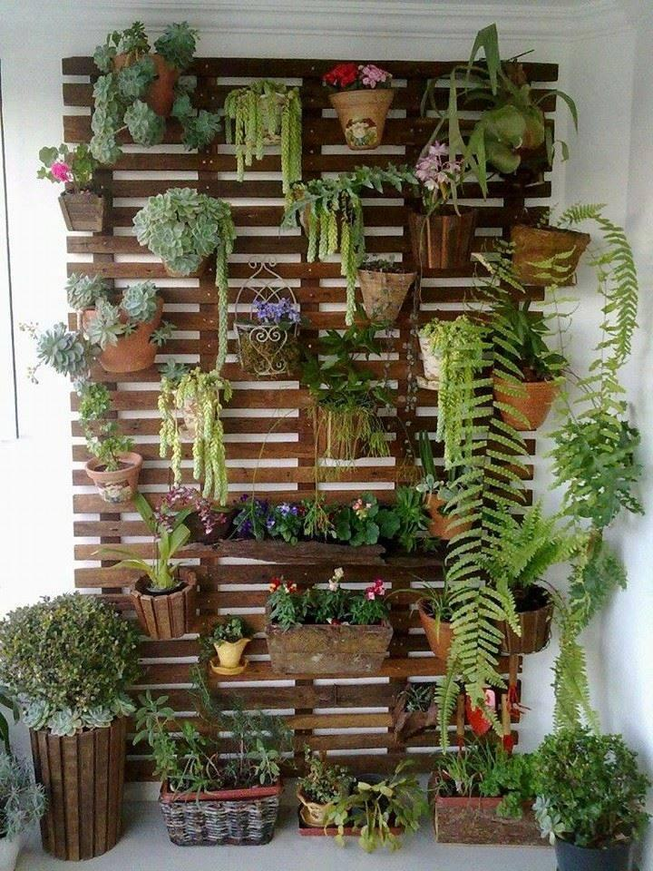 Vertical garden designs to inspire you