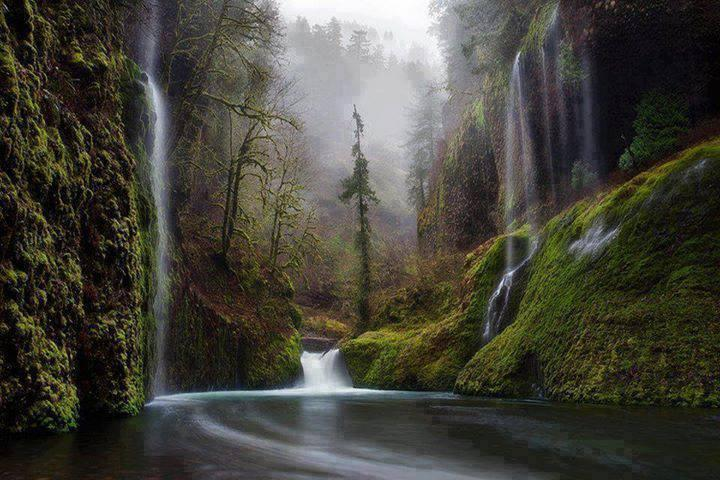 Columbia River Gorge, Oregon... isn't this a beautiful place of natur