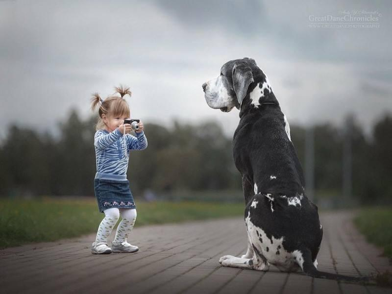 Amazing Photography of Baby and Dog