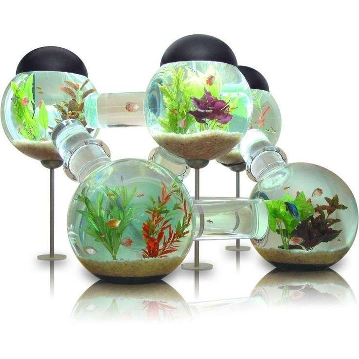 wow.. this makes me want a fish, just to have the cool fish house