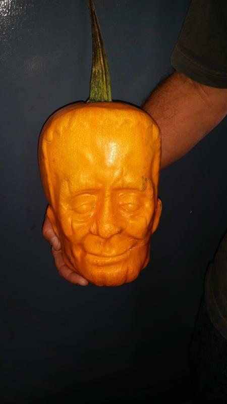 What happens when you grow a pumkin inside a plastic mold.